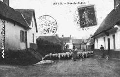 Cartes postales photos rue st pol anvin 62134 22